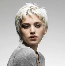 Short Hairstyle For Women 2016 16 gray short hairstyles and haircuts for women 2017 1976 by stevesalt.us