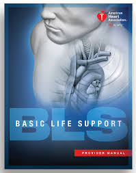 healthcare provider aha certified bls course