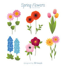 free vector spring flower collection