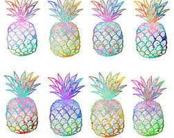 pineapple clipart. pineapple clipart,digital clipart - instant download png files included l