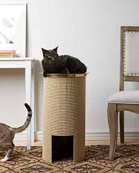 cat scratching post martha stewart