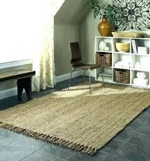 outdoor rug mesmerizing patio natural sisal rugs gray target 3x5 various indoor target round rug