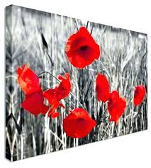red poppy wall art poppy canvas wall art red canvas wall art lovely collection of red