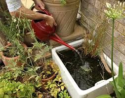 how to make a small pond ideas for