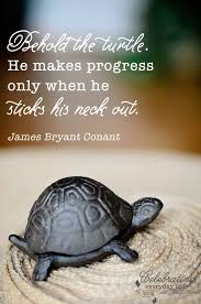 Turtle Quotes be inspired Behold the Turtle quote 10
