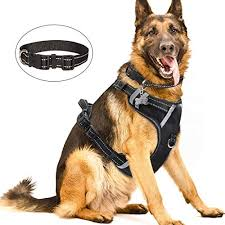 Best Dog Harness For Running Buyers Guide Scout Knows