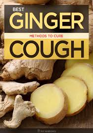 to know more about how to use ginger for cough