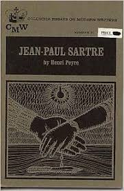 write about something that s important sartre essay sartre essay