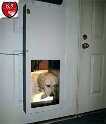 extra large pet door magnetic dog door solo automatic dog doors extra large magnetic dog door