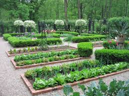 Kitchen Garden Layout Gorgeous Look At Those Greens Potager Pinterest Gardens