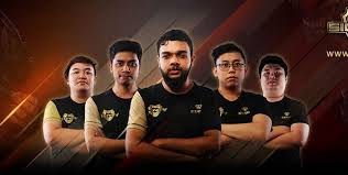 cobx gaming is pleased to announce the formation of their new dota