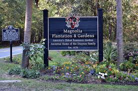a sign for the magnolia plantation in charleston sc