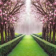 Cherry Blossom Backdrop Leowefowa 10x10ft Spring Garden Backdrop Cherry Blossom Blooming Fresh Flowers Backdrops For Photography Jungle Forest Trees Plants Green Grassland