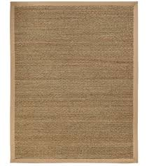 sabertooth seagrass area rug image