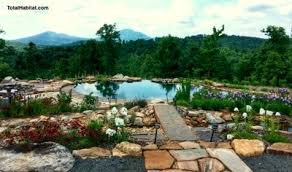 natural looking in ground pools. Natural Looking In Ground Pools S
