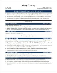 Human Resourceme Format Entry Level Hr Examples 12 Entrylevel