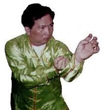 Dragon Style Kung Fu 2 Intermediate Basics Forms Master Yip