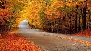 Top autumn wallpaper download free ...