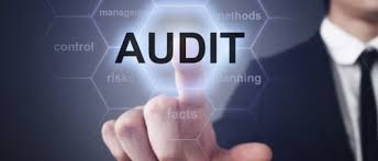Image result for IT Audit