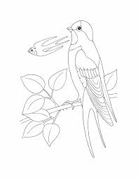 Birds Coloring Pages 18 Birds Kids