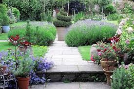 amazingly low maintenance garden pots
