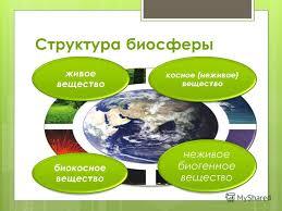 Презентация на тему Учение В И Вернадского о биосфере класс  3 Структура биосферы живое вещество косное неживое вещество неживое биогенное вещество биокосное вещество
