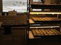 "Quiet Creek Herb Farm and School of Country Living - Blerje dhe shitje me  pakicë - ""Brookville, Pennsylvania"" - 32 Reviews - 1 362 Foto | Facebook"
