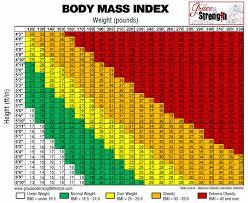 Bmi Body Mass Index Template Calculator