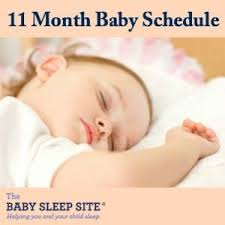 11 Month Development Chart 11 Month Old Baby Schedule Sample Schedules The Baby