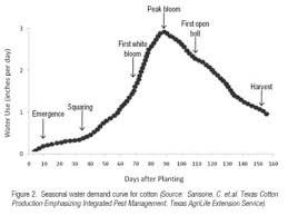 Cotton Growth Stage Chart When Should I Start Planting Cotton In Alabama Timely