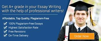 essay writing help co essay writing help