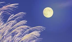 2021年は9月21日 中秋の名月の由来や楽しみ、十五夜との違いは?   SKYWARD+ スカイワードプラス