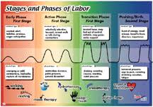 Phases Of Labor Chart Pin On Birth Assistant Help Sheet