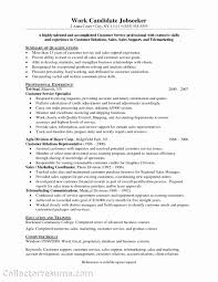 9 Samples Of Resumes For Customer Service Payment Format