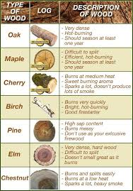 Pin By Anthony Penick On Wood Survival Skills Wilderness