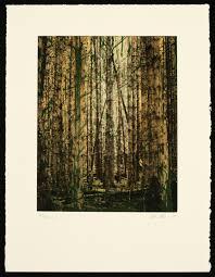 8x10 Resume Paper Recent Prints Margaret Niven 16