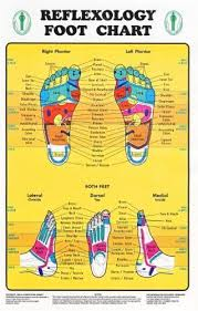 Amazon Com Reflexology Foot Chart Reflexology Zones