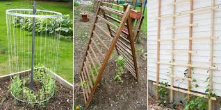 Small Picture 12 DIY Garden Trellis Plans Designs and Ideas