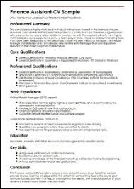 Finance Assistant Cv Sample Myperfectcv
