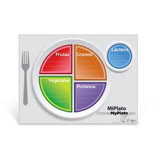 food plate in spanish. Unique Food In Food Plate Spanish L