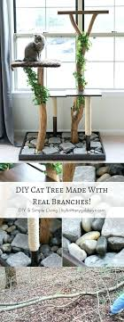 make a cat tree using real branches see how i made this beauty for about easy pacific pets super shelf ca easy diy cat tree house