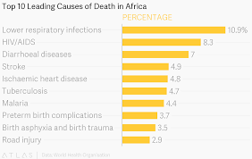 Top 10 Leading Causes Of Death In Africa