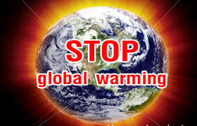 what can we do to stop global warming essay