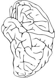 Small Picture brain coloring page EDUCATION Pinterest Brain Mindset and
