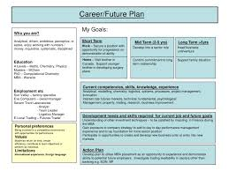 sample career plan career plan example