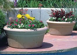 Low Bowl Outdoor Concrete Planters ...