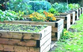 medium size of herb garden ideas boxes above ground gardening plans box engaging decorating gardens for