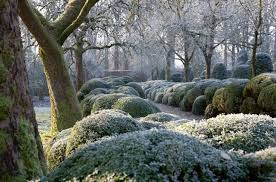 Small Picture Expert Advice 7 Tips to Put Your Garden to Bed for the Winter