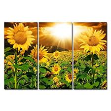 Small Picture Amazoncom Canvas Print Wall Art Painting For Home Decor Bright