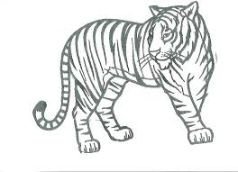 Coloring Pages Tigers Coloring Page R Pages Rs Large Picture Size Of